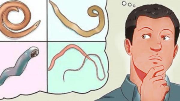 Bağırsaqlarda parazitləri yox edən 4 MƏHSUL