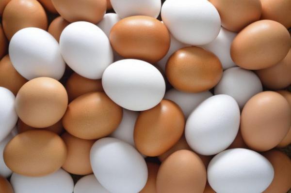 Mərcə 50 yumurta yeməyə çalışdı və...