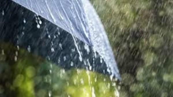 Hava şəraiti ilə bağlı XƏBƏRDARLIQ - Güclü külək, intensiv yağış...