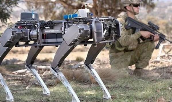 """ABŞ """"robot itlər""""i sınaqdan keçirir"""