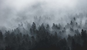 Sabah duman, külək olacaq